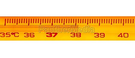 mercury thermometer