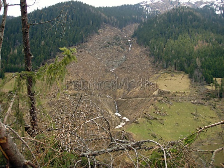 avalanche damage in the spring
