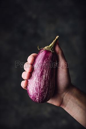 purple eggplant in hand