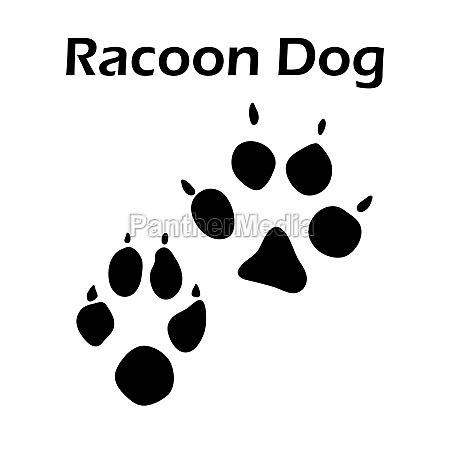 racoon dog footprint