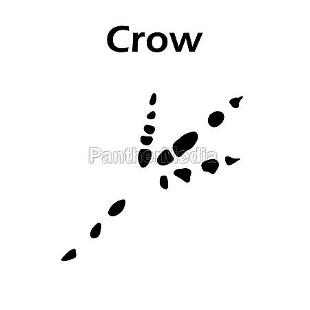 crow footprint