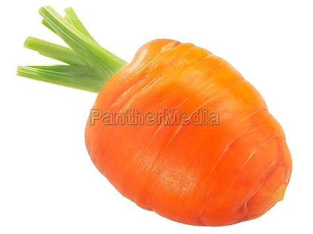 short rondo carrot daucus carota taproot