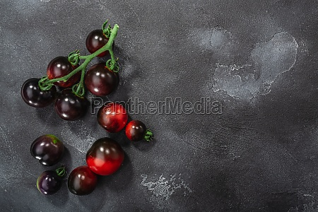 indigo rose heirloom cherry tomatoes on