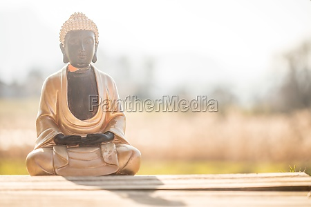 buddha statue in india relaxation balance