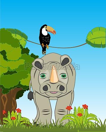 wildlife rhinoceros and bird toucan on