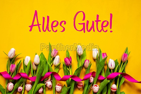 colorful tulip alles gute means best