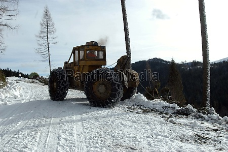 wood transport and logistics in winter
