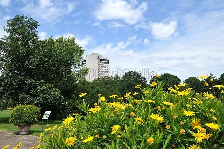city park stadtpark of hannover