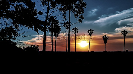 sunset coastal urban silhouette