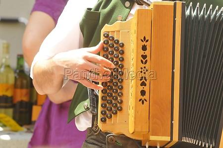 harmonica or accordion musical instrument