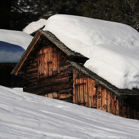 weathered old timber shed with a