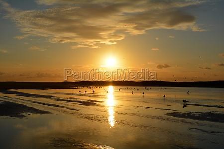 orange sunset at low tide over