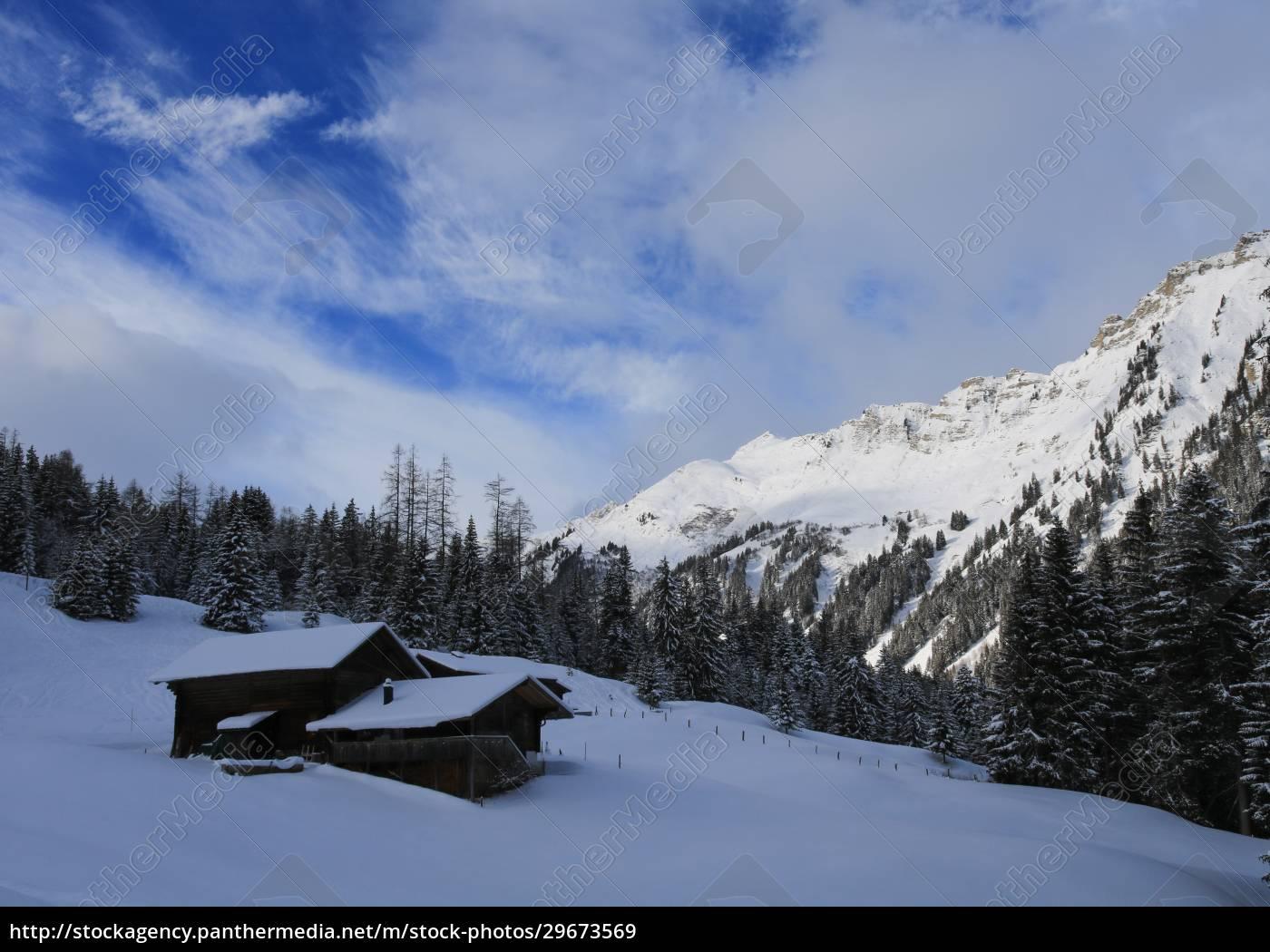 winter, scene, in, tuxberg, , bernese, oberland. - 29673569