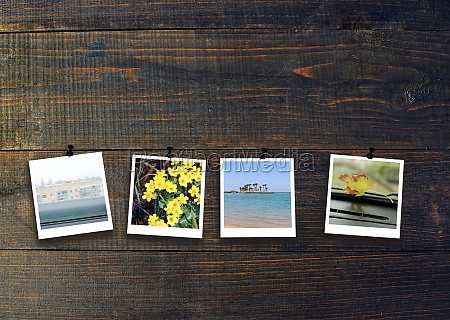 four photos of four seasons on