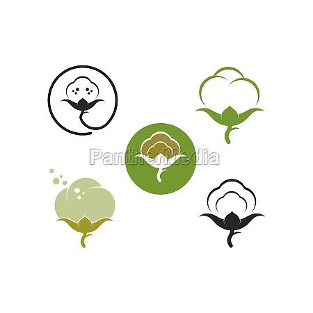 cotton vector illustration design