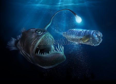 scary deep sea fish with light