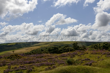 hilly exmoor landscape