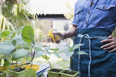woman misting potted plants with spray