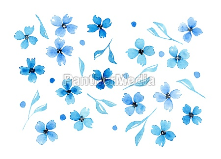 watercolor blue flowers and leaves isolated