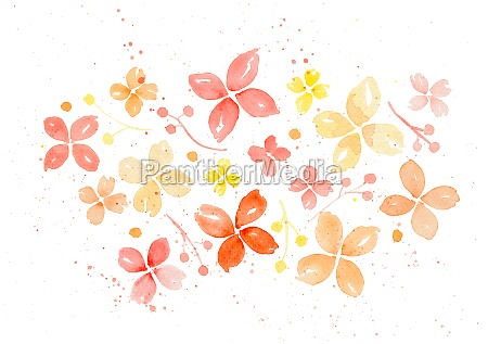watercolor simple flowers isolated over white