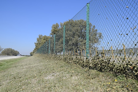 fence from the mesh netting with