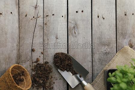 gardening hobby concept eco pot green