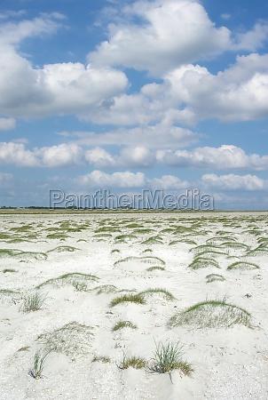 beach of sankt peter ording north