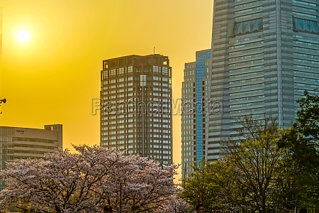 yokohama city and sunset scenes