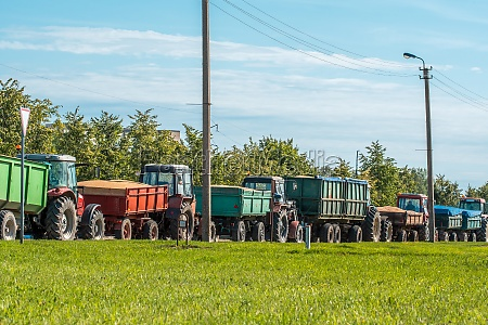 tractors delivering recently harvested grain