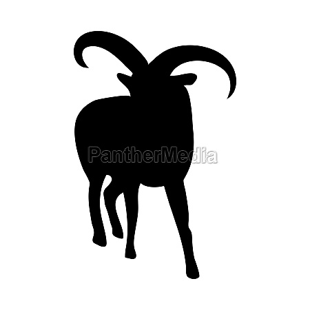 dagestan goat silhouette