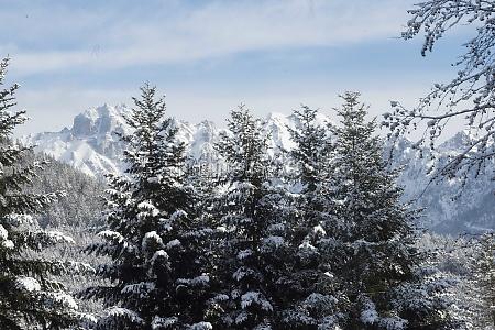 the haller mauern mountain near admont