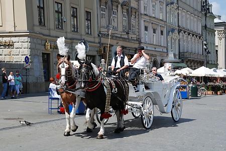 horse carriage in krakow poland