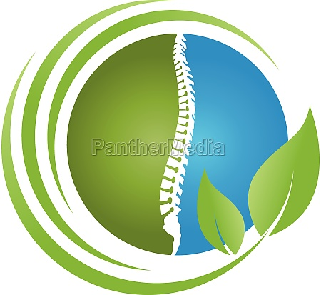 spine and leaves back orthopedics massage