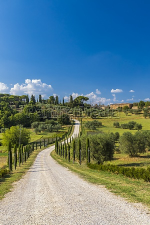 typical tuscan landscape near montepulciano and