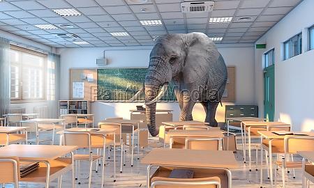big elephant inside a school concept