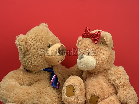 two brown teddy bears sitting opposite