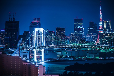 night view of tokyo seen from