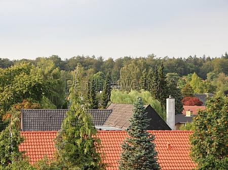 rural city horizon in green fresh