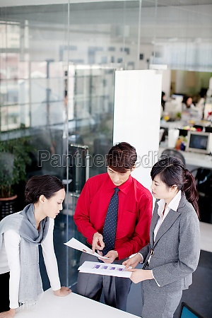 white collar workers in the office