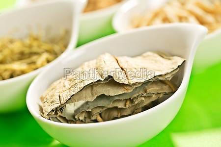 traditional chinese medicine culture