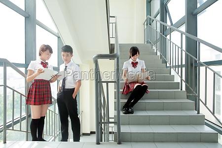 school uniform education luxx adolescence junior