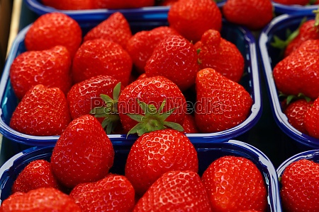 close up red ripe strawberry on