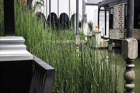 green summer garden of resort exterior