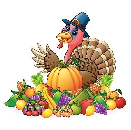 happy pilgrim turkey bird cartoon with