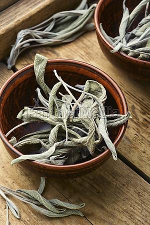 dry sage leaf herbal medicine