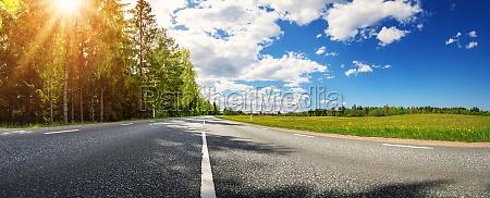 asphalt road with beautiful trees on