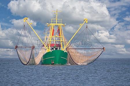 shrimp boat north sea north frisia