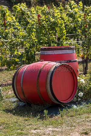 two old red barrels in a