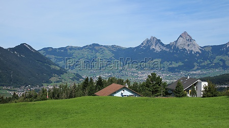 green meadow and mt mythen view