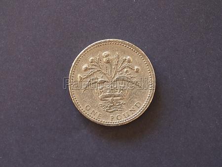 1 pound coin united kingdom